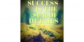 Success is the sum of efforts and details